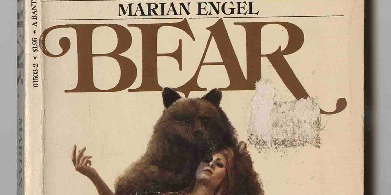 Sex on top of bear