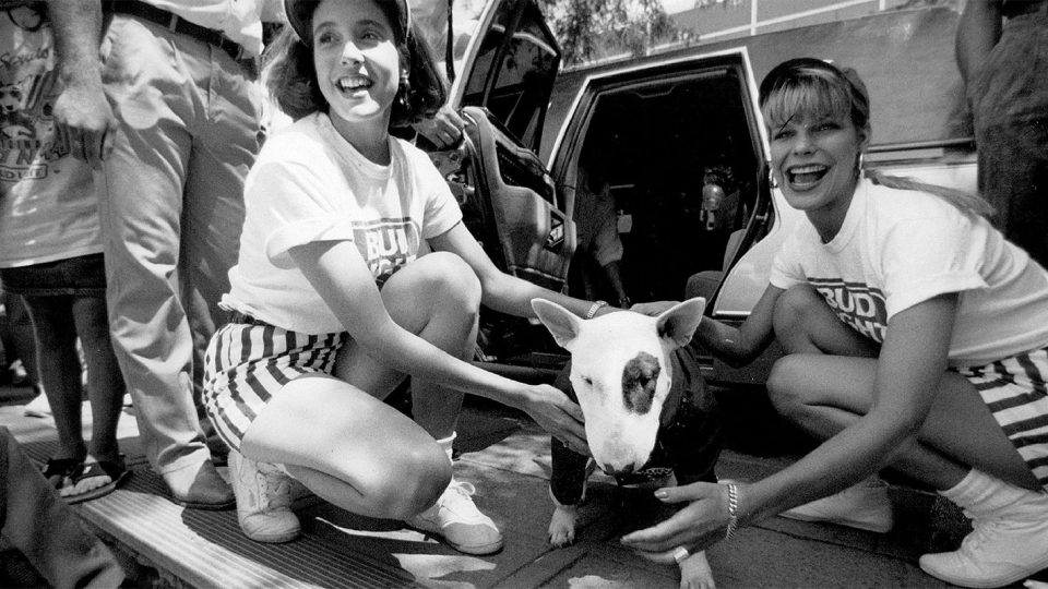 How Baby Got Back Was a Response to Spuds MacKenzie, Bud Light Party Dog